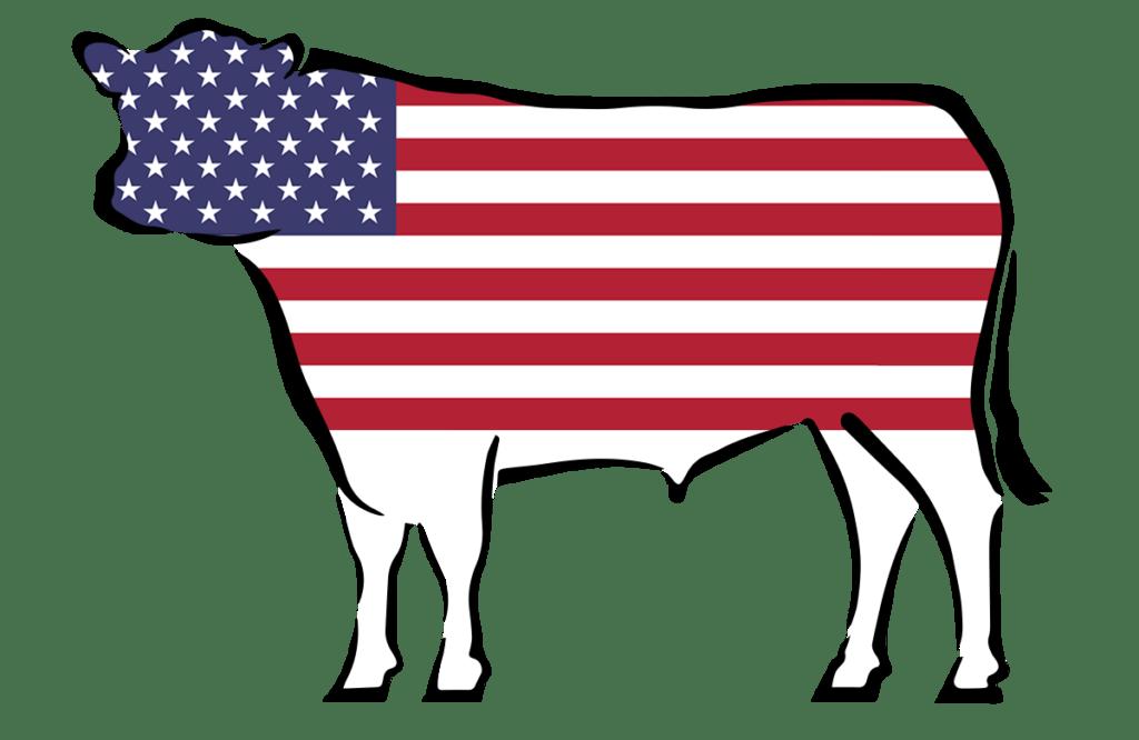 Fleischteilung nach US Amerikanischer Methode